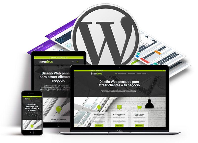 Diseño web responsive Brandevs
